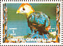 Red-crested Turaco Tauraco erythrolophus  1972 Birds