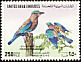 Indian Roller Coracias benghalensis  1994 Birds