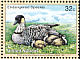 Nene Branta sandvicensis  1998 Endangered species 4v set