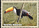 Toco Toucan Ramphastos toco  2003 Endangered species