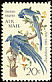 Black-throated Magpie-Jay Calocitta colliei  1967 Audubon