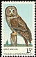 Great Grey Owl Strix nebulosa  1978 Wildlife conservation