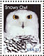 Snowy Owl Bubo scandiacus  1999 Arctic animals 5v strip