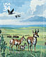 Canada Goose Branta canadensis  2001 Great Plains prairie 10v sheet, sa