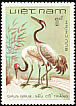 Common Crane Grus grus  1983 Birds