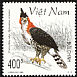 Ornate Hawk-Eagle Spizaetus ornatus  1998 Birds of prey