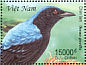 Asian Fairy-bluebird Irena puella  2000 Birds