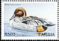 Northern Pintail Anas acuta  1999 Flora and fauna 10v set