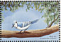 Blue Jay Cyanocitta cristata  1999 Flora and fauna 12v sheet