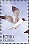 Laughing Gull Leucophaeus atricilla  1999 Flora and fauna 12v sheet