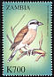Red-backed Shrike Lanius collurio  2000 Birds of the world
