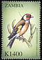 European Goldfinch Carduelis carduelis  2000 Birds of the world