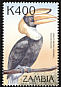 Great Hornbill Buceros bicornis  2000 Birds of the tropics