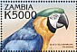 Blue-and-yellow Macaw Ara ararauna  2000 Birds of the tropics
