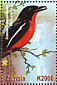 Crimson-breasted Shrike Laniarius atrococcineus  2001 Animals of Africa 6v sheet