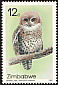 African Barred Owlet Glaucidium capense  1987 Owls