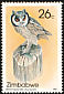 Northern White-faced Owl Ptilopsis leucotis  1987 Owls