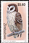 African Grass Owl Tyto capensis