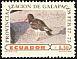 American Oystercatcher Haematopus palliatus