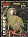 Chestnut-fronted Macaw Ara severus