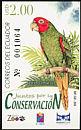 Red-masked Parakeet Psittacara erythrogenys