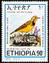 Abyssinian Longclaw Macronyx flavicollis